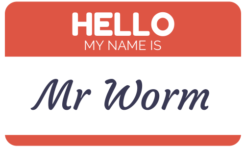 Mr Worm