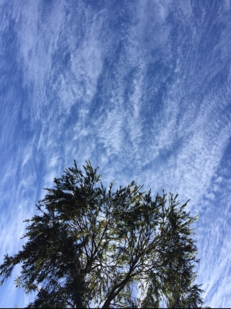 Neurum Creek Bush Retreat sky